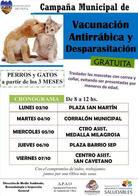 Campaña gratuita para perros y gatos